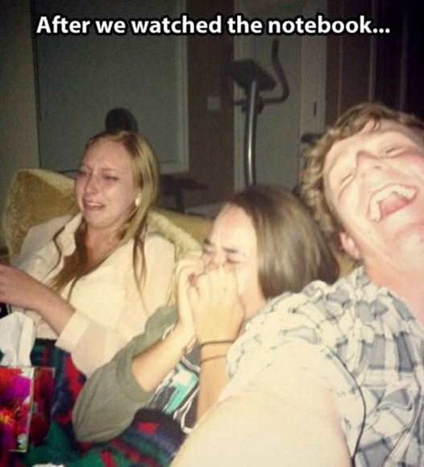 funny pictures and videos of the day